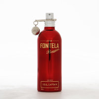 Fontela Soul Captain for men 100 ml